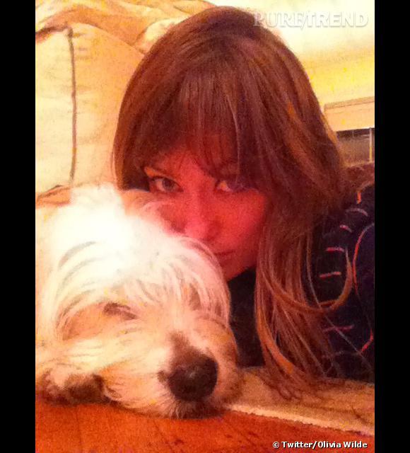 Olivia Wilde a la même coupe que son chien.
