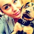 Miley Cyrus et Happy nouveau compagnon de la demoiselle.