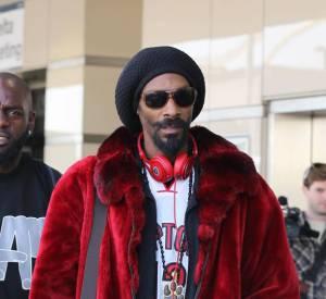 Snoop Lion devrait changer son nom et reprendre Snoop Dogg, c'est le résultat du sondage !