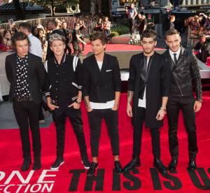 One Direction au Stade de France : 2000 recherches/minute pour leur tournee !