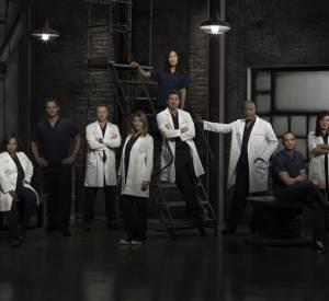 Grey's Anatomy : toute l'équipe.
