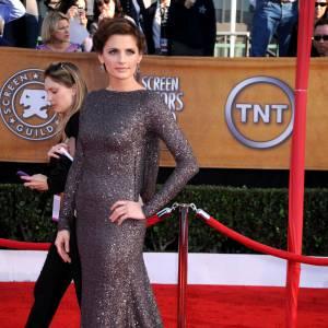 Stana Katic parfaite en robe fourreau.