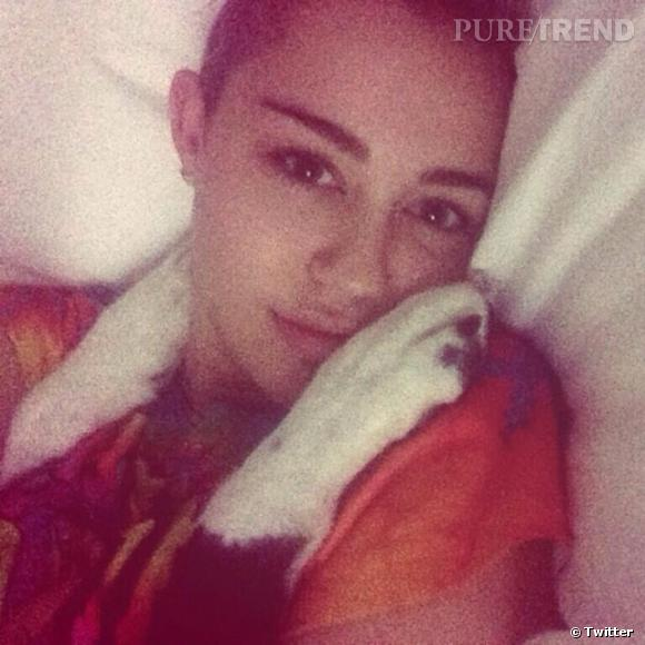 Célibataire, Miley Cyrus se tourne vers ses chiens pour trouver un peu de réconfort.