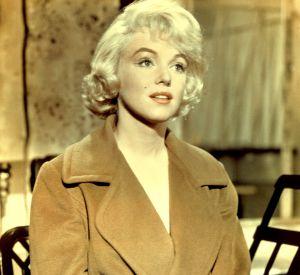 Et si on clônait Marilyn plutôt ?
