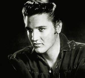 Elvis Presley pourrait lui aussi être cloner... Il ferait un super copain à John Lennon bis.