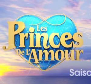 Les Princes de l'Amour 2 : quel salaire pour chercher l'Amour ?