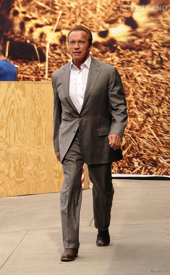 Arnold Schwarzenegger, soyons honnête, son pire rôle reste celui de Gouverneur.