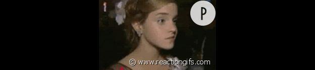 www.reactiongifs.com