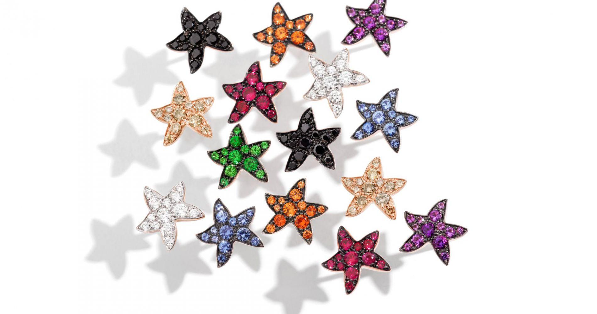 Les précieuses étoiles de mer Dodo
